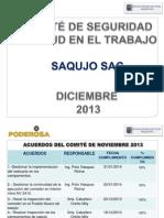 AVANCE Presentación del COMITÉ de SST Enero  2014 - SAQUJO