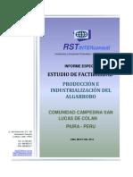 Resumen Ejecutivo Proyecto Algarrobo