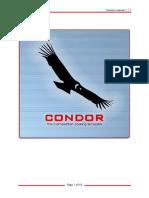 Condor Manual
