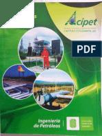 Curso Oleoductos - Cap. Est. UIS ACIPET - LW