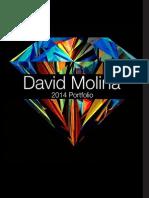 P9 DavidMolina Presentation