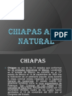 Chiapas Al Natural