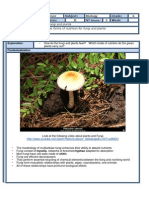 CLASS FORMAT. 6º AXIS 2 NUTRITION IN PLANTS AND FUNGI