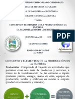 Concepto y elementos de la producción en la empresa. La maximización de los beneficios