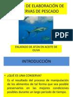 Conservas de Pescados - Jose Torres