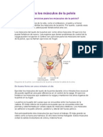 Ejercicios para los músculos de la pelvis.doc