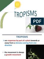 tropisms-