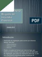TREINAMENTO BRIGADA FLORESTAL