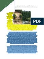 Gejala Penerokaan Hutan Secara Haram Semakin Berle