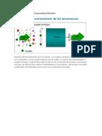 Cómo funciona un Biosensor para detectar Biotoxinas