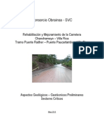 Informe - Zonas Criticas - Pte. Raither