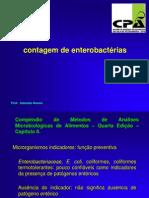 aula - 2013 - contagem de enterobactérias - Cópia (1)