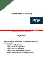 Fundamentals of Multi-Org
