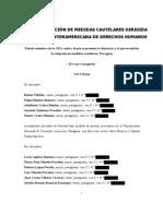 Denuncia y Petición de Medidas Cautelares dirigida a la Comisión Interamericana de Derechos Humanos