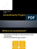 amendments project