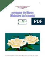 rapport de stage 2006-2007 FATI.doc