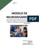 Informe+Modelo+Neurodesarrollo