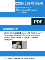 Expectoracion (2)