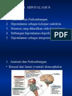 Hipotalamus-2005