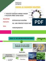 Microorganismos Utilizados en Procesos Industriales