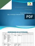 Ppp Plan de Trabajo Del Consejo Promotor de Valores