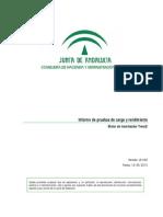 Formato de Informe Pruebas Carga