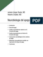 Neurobiologia Del Apego (Leida)
