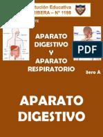 sistemadigestivoyrespiratorio3eroa-110118212211-phpapp01