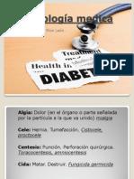 Terminología medica 3