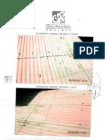 Fotos Oficina Selva Alegre NUeva 2º.pdf