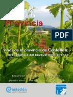 Vinos de Castellon y Provincia
