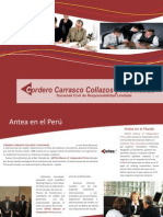 Brochure Cordero Carrasco Collazos
