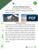 ecosistema chilenos