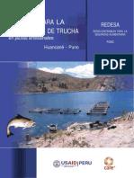 52215061-Manual-de-Care-Trucha.docx