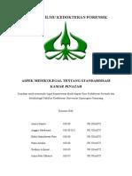 COVER REFERAT_AH22122013.doc