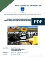 Biocombustibles Liquidos en Uruguay Perspectivas Generales de Desarrollo