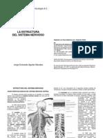 Estructura Del Snh (1)