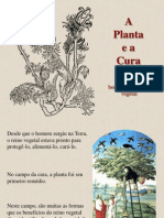 A Planta e a Cura