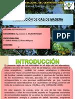 GAS DE MADERA RAMOS MORALES.pptx