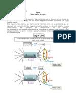 LeyLenz_JuanChango_603481.pdf