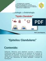 Clase Tejido Glandular-Liset