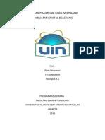 Laporan Praktikum Kimia Anorganik Pembuatan Kristal Belerang.pdf