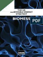 Bio Mess - the UK renewable energy strategy