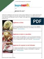 152898626 Cele Mai Bune Retete de Inghetata de Casa Versiune Imprimanta PDF