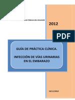 Guia Practica Clinica Infeccion de Vias Urinarias Ecuador