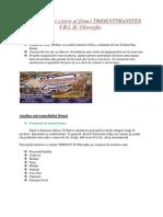 Analiza Mediului Extern Al Firmei TRIDENTTRANSTEX S