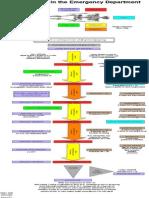 Fllow Chart for Cardiac Arrest
