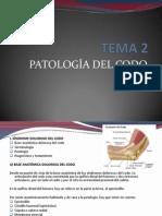 OSTEOPATÍA CODO teoria.pdf