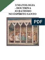 BATISMO NO ESPÍRITO SANTO LIVRO