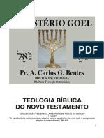 TEOLOGIA BÍBLICA DO NOVO TESTAMENTO BENTES